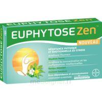 Euphytosezen Comprimés B/30 à BOURG-SAINT-MAURICE