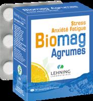 Lehning Biomag Comprimés à Croquer Agrumes B/90 à BOURG-SAINT-MAURICE