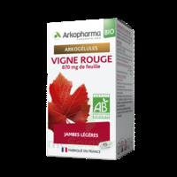 Arkogélules Vigne Rouge Bio Gélules Fl/45 à BOURG-SAINT-MAURICE