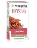 Arkogélules Levure De Riz Rouge Gélules Fl/150 à BOURG-SAINT-MAURICE