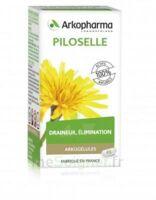 Arkogélules Piloselle Gélules Fl/45 à BOURG-SAINT-MAURICE
