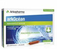 Arkocean Magnesium Marin Solution Buvable Caramel 20 Ampoules/10ml à BOURG-SAINT-MAURICE