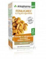 Arkogélules Fenugrec Bio Gélules Fl/40 à BOURG-SAINT-MAURICE