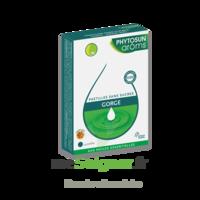 Phytosun Arôms Pastilles Sans Sucre Gorge Arôme Miel X 24 à BOURG-SAINT-MAURICE