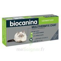Biocanina Multivermyx Comprimés Vermifuge Chat B/2 à BOURG-SAINT-MAURICE