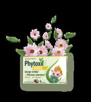 Phytoxil Gorge & Défenses Naturelles Pastilles B/20 à BOURG-SAINT-MAURICE