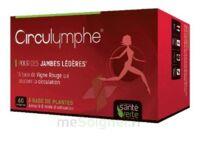 Santé Verte Circulymphe Triple Actions B/60 à BOURG-SAINT-MAURICE