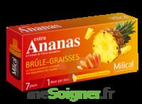 Milical Ananas Bruleur De Graisse à BOURG-SAINT-MAURICE