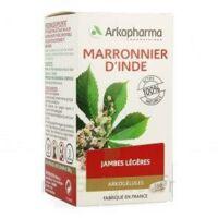 Arkogelules Marronnier D'inde Gélules Fl/150 à BOURG-SAINT-MAURICE