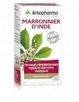 Arkogelules Marronnier D'inde Gélules Fl/45 à BOURG-SAINT-MAURICE