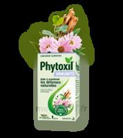 Phytoxil Immunité Gélules B/40 à BOURG-SAINT-MAURICE