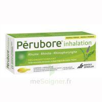 Perubore Caps Inhalation Par Vapeur Inhalation Plq/15 à BOURG-SAINT-MAURICE