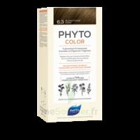 Phytocolor Kit Coloration Permanente 6.3 Blond Foncé Doré à BOURG-SAINT-MAURICE