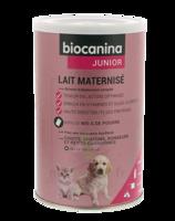 Biocanina Lait Poudre Maternisé B/400g à BOURG-SAINT-MAURICE