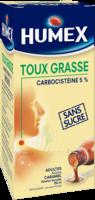 Humex 5 % Solution Buvable Expectorant Sans Sucre Adulte Fl/250ml à BOURG-SAINT-MAURICE