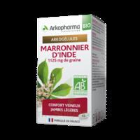 Arkogélules Marronnier D'inde Bio Gélules Fl/45 à BOURG-SAINT-MAURICE