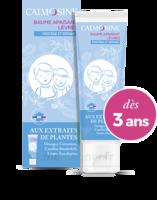 Calmosine Baume à Lèvres Extraits Naturels De Plantes T/20ml à BOURG-SAINT-MAURICE