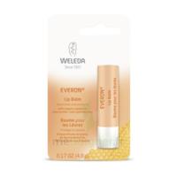 Weleda Soin Des Lèvres Everon® 4,8ml à BOURG-SAINT-MAURICE